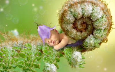 Keizersnede baby en de darmflora