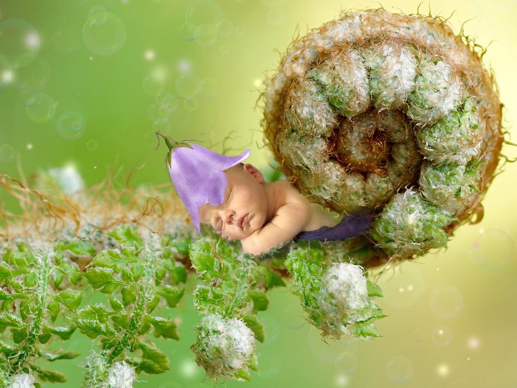 keizersnede baby en darmflora