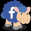 facebookschaap